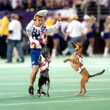 football halftime dogs